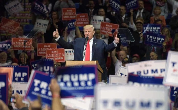 Trump Allies Line Up to Sweep Elections