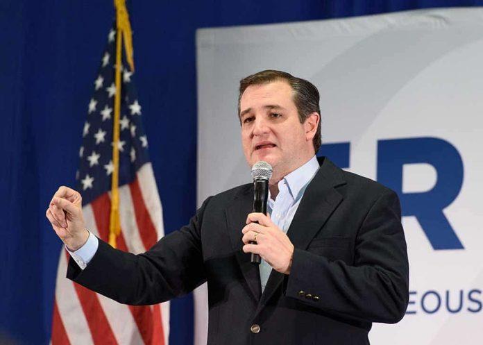 Democrats Vote Against Ted Cruz's Amendment