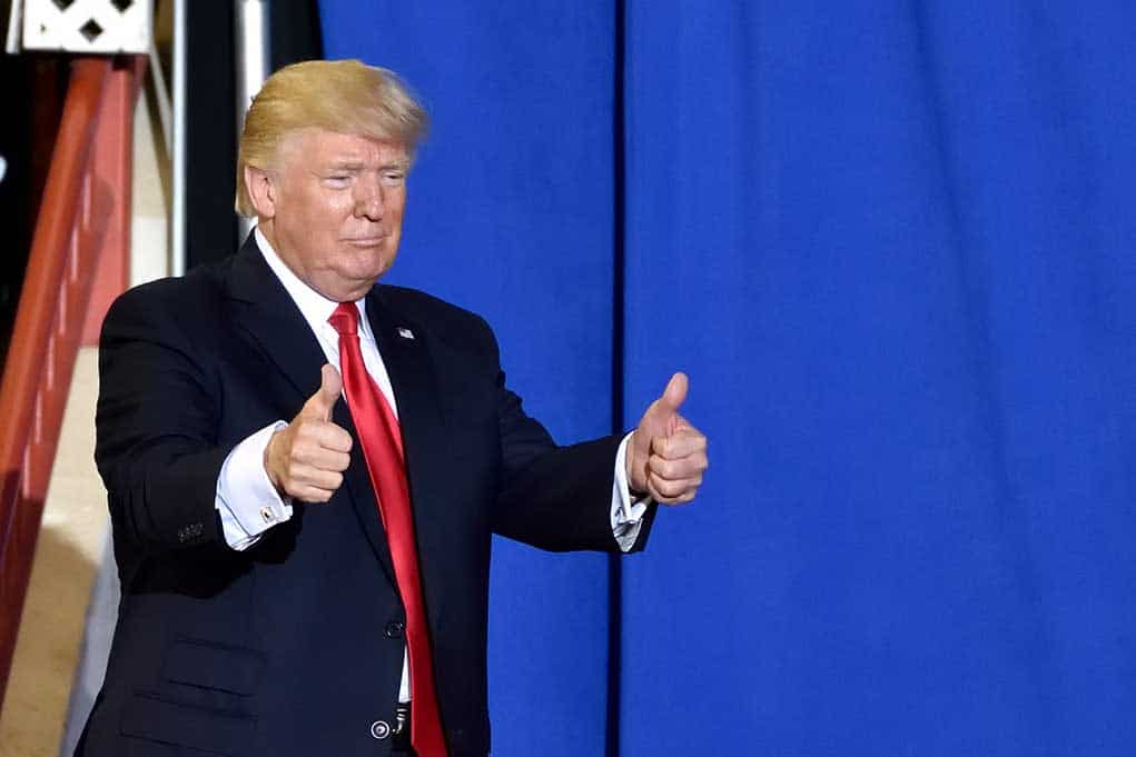 Mary Trump Admits She Thinks Trump Is Running