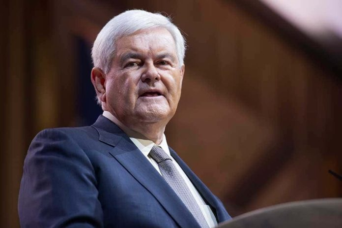 Did Newt Gingrich Just Define the Winning Message Against Democrats